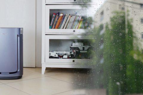 爱恨交加是梅雨天