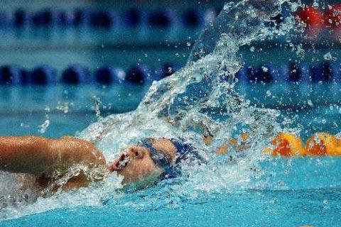泳池除湿机哪个品牌好?